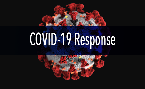 An image of the covid-19 virus